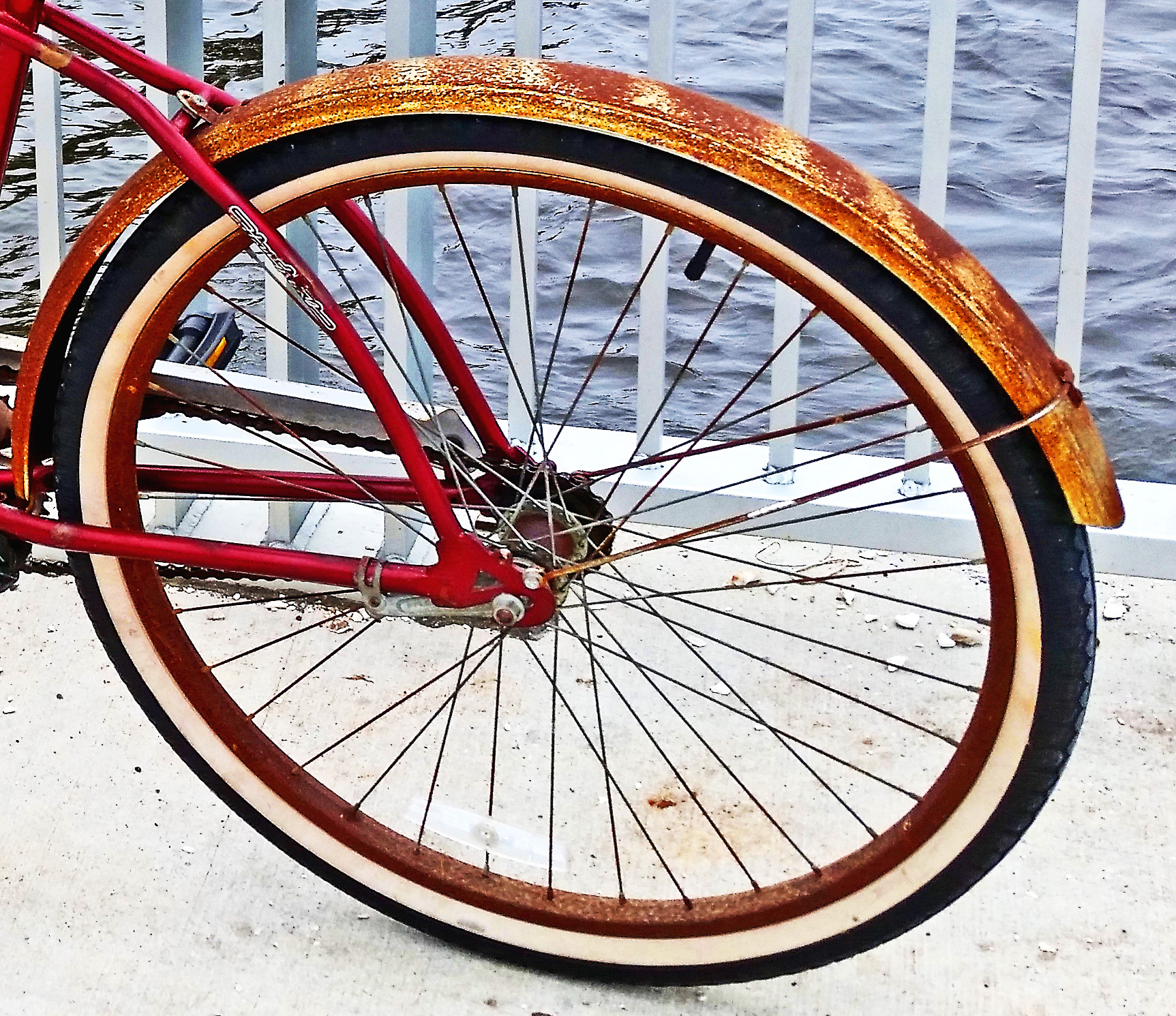 Rusty Rear Fender On Vintage Huffy Bike - Love's Photo Album
