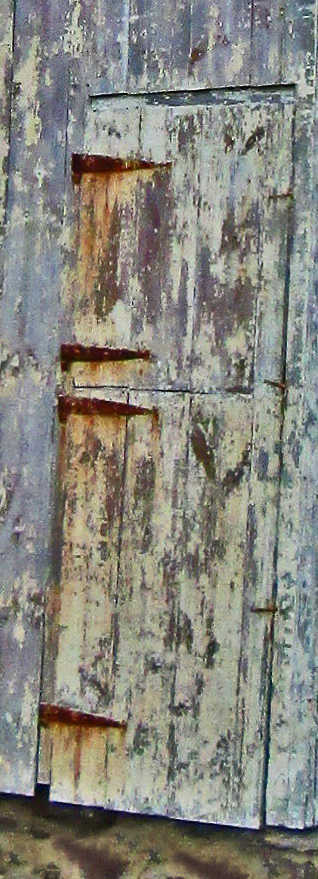 Rear Dutch Barn Door