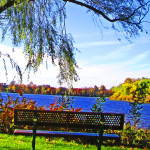 Park Bench On The Water