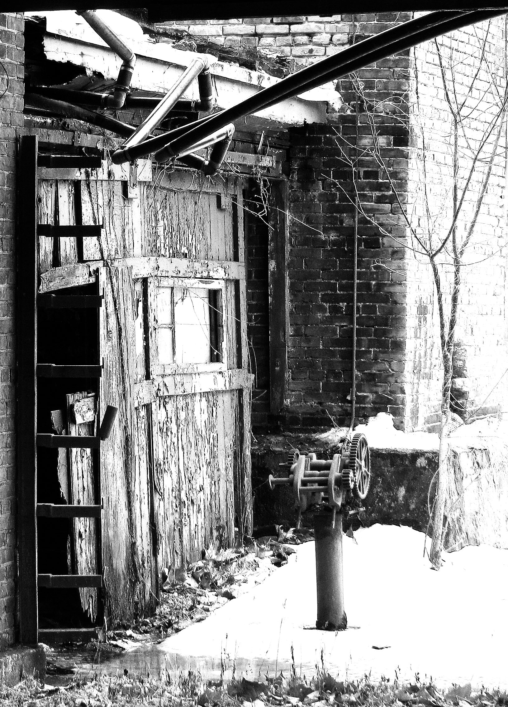 Old Trenton Shed