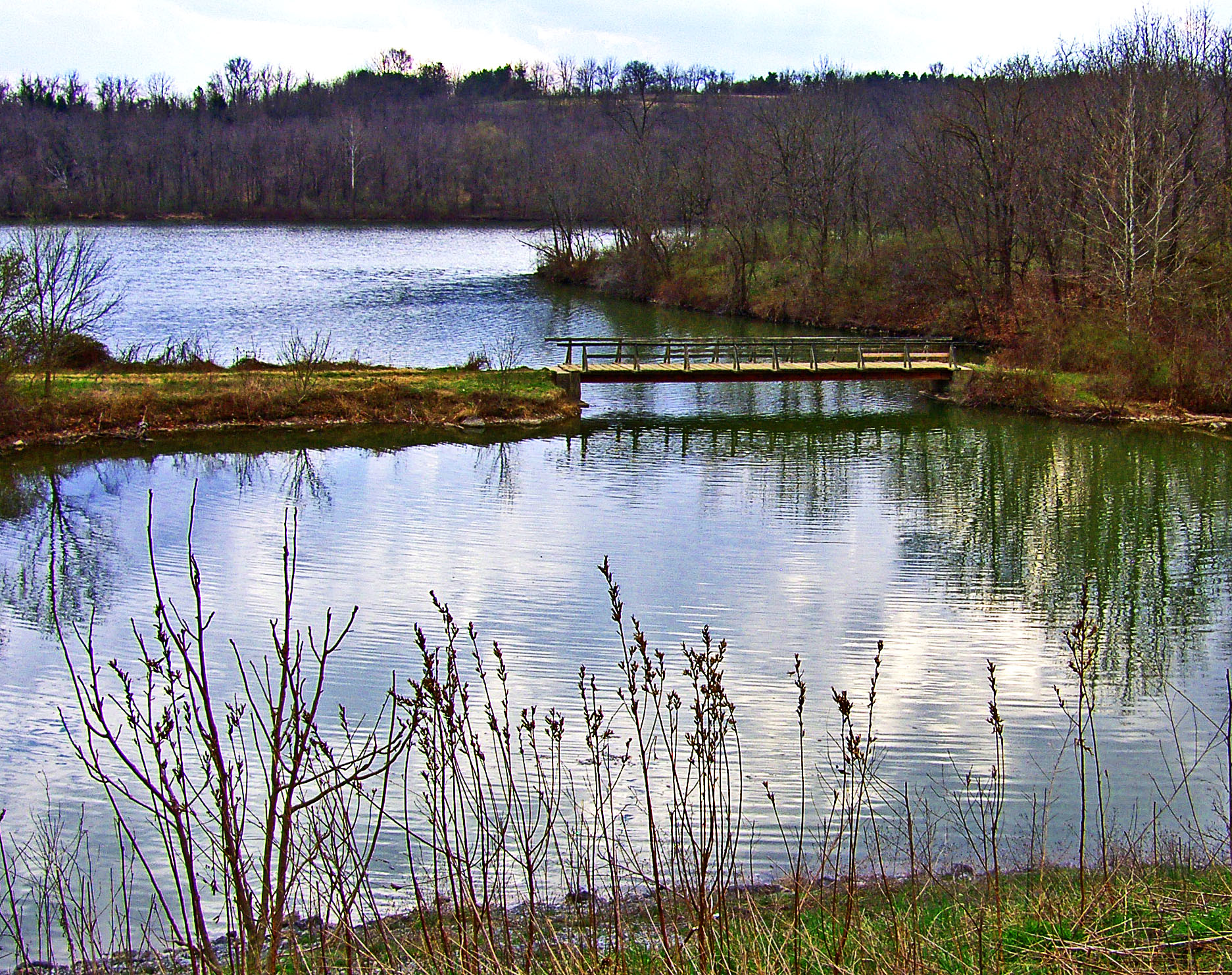 Trail Bridge Over Blue Marsh Lake