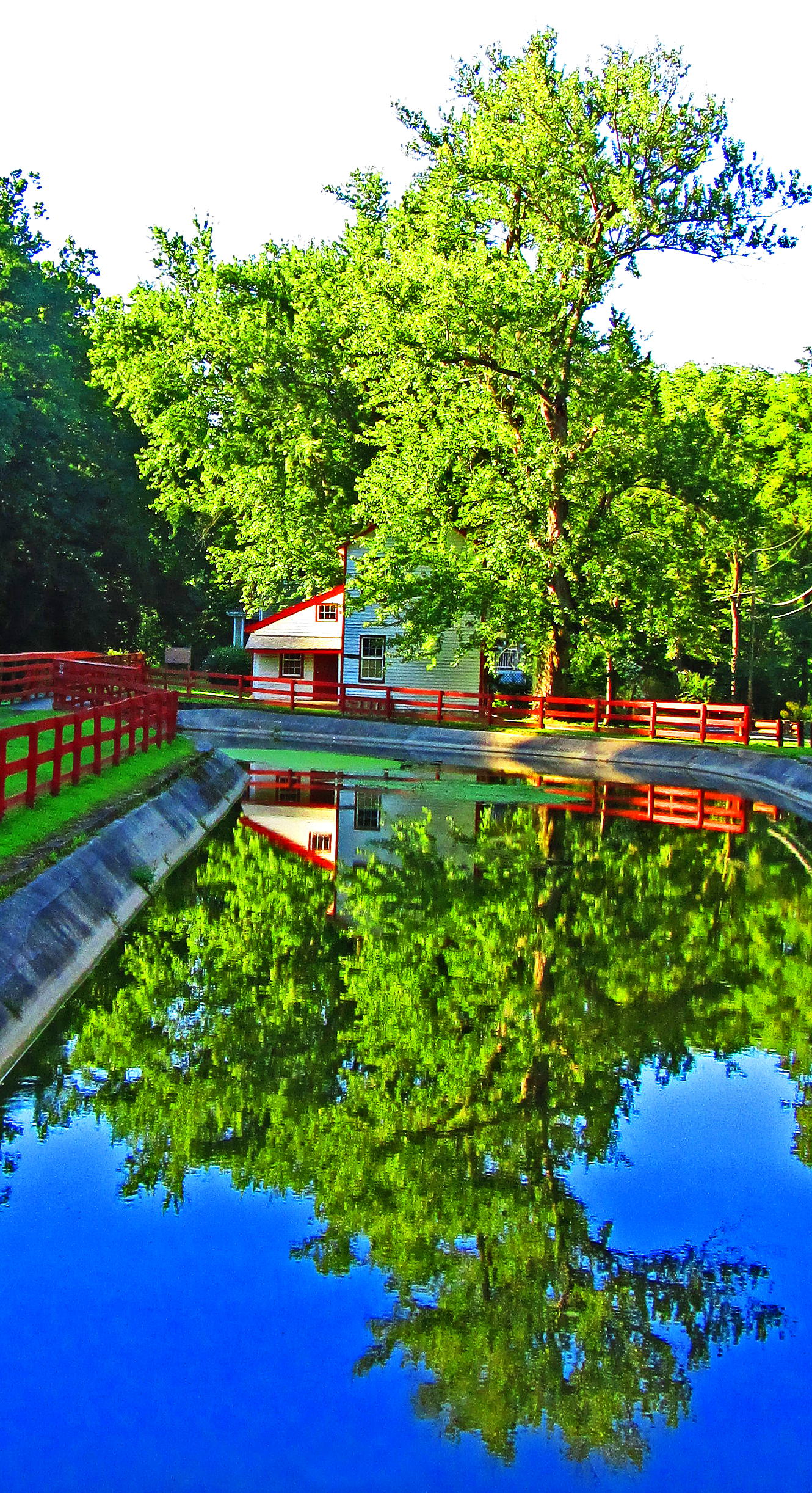 Delaware River Canal Summer Reflections