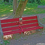 Dedicated Park Benches