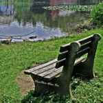 Park Bench Along The Raritan River