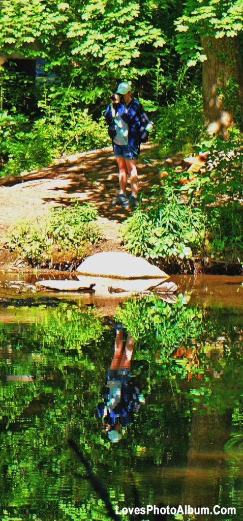 Photographing Wissahickon Creek Bed
