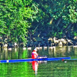 Sculling Past A Gaggle On The Schuylkill