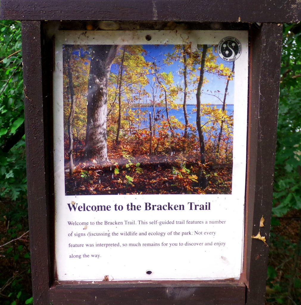 Bracken Trail Sign