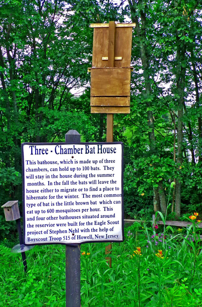 Three Chamber Bat House