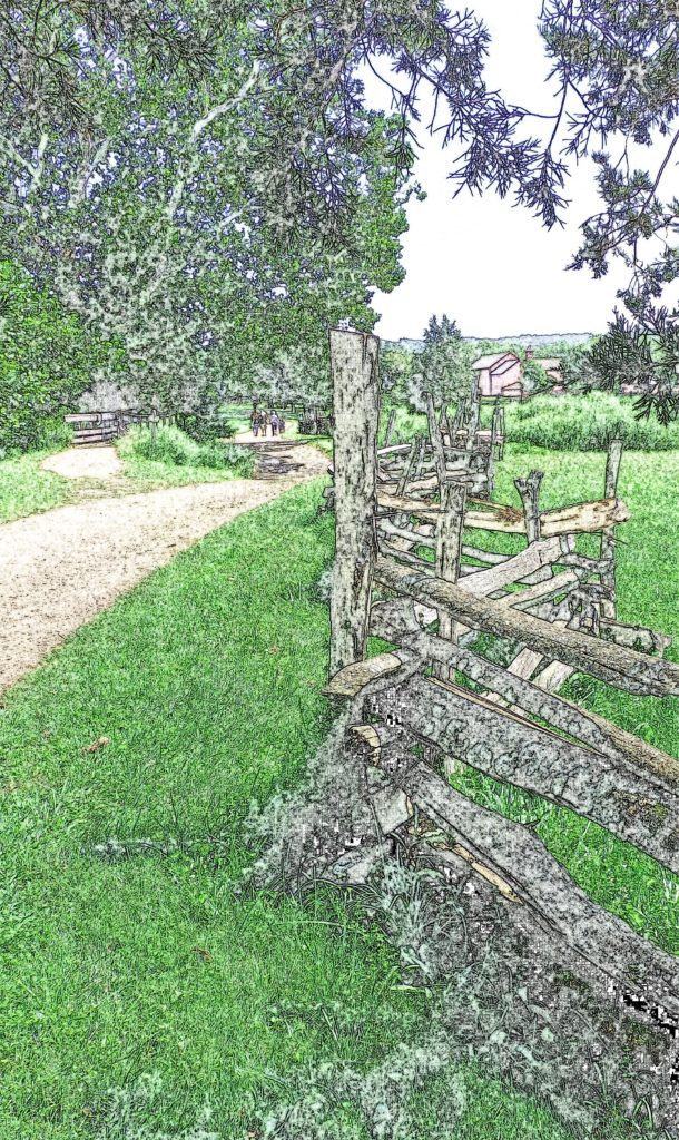 Fencing Along The Trail