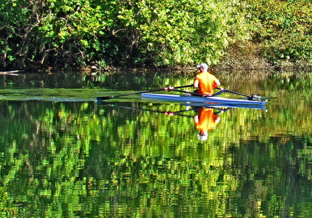 Sculling Reflections On The Schuylkill